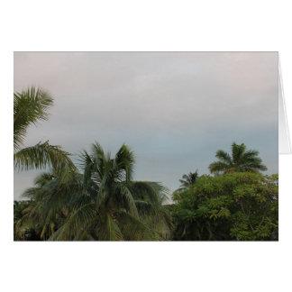 木または植物の景色 カード