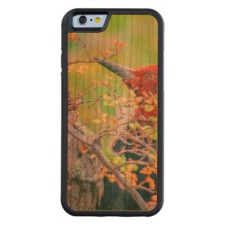 木をくちばしでつつく森林のキツツキ CarvedチェリーiPhone 6バンパーケース