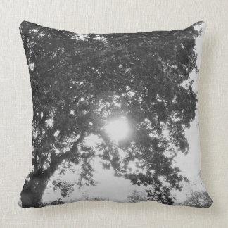 木を通した英国の田舎太陽 クッション