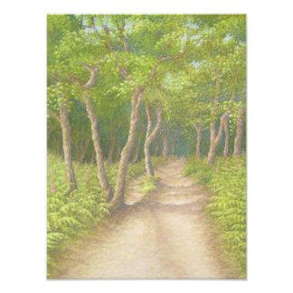 木を通した道、Leithの丘の写真の印画 フォトプリント