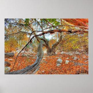 木を通して ポスター