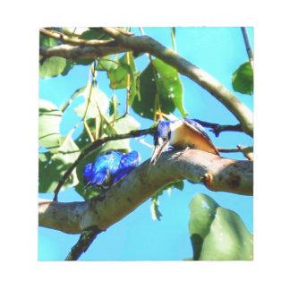 木クイーンズランドオーストラリアのカワセミ ノートパッド