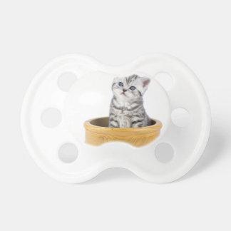 木ボールに坐っている若い銀製の虎猫猫 おしゃぶり