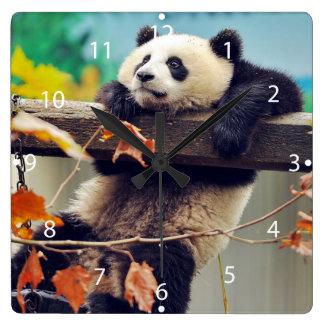 木上のジャイアントパンダの赤ん坊 スクエア壁時計