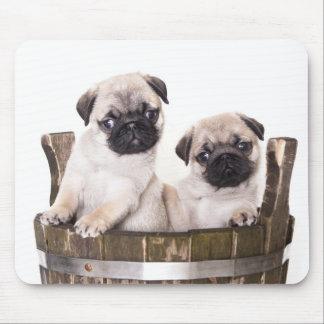 木枠のバレルのマウスパッドのかわいいパグの小犬 マウスパッド