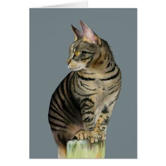 """木製のポストのイラストレーションの""""眺望""""の虎猫猫 カード"""