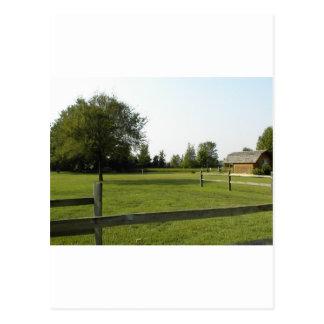 木製の塀および木が付いている緑の芝生 ポストカード