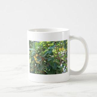 木、イタリア コーヒーマグカップ