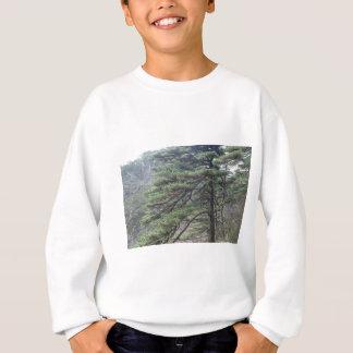 木 スウェットシャツ