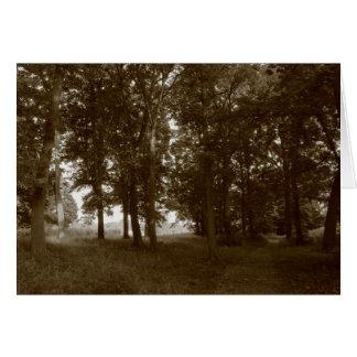 木、ビュート公園カーディフ-ある調子を与えられるセピア色 カード