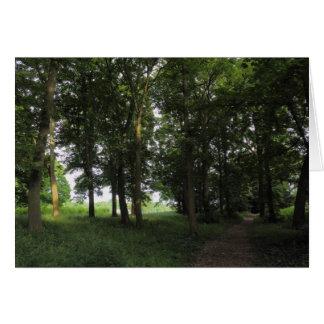 木、ビュート公園カーディフ カード
