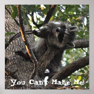 木-ポスターの頑固なアライグマ ポスター