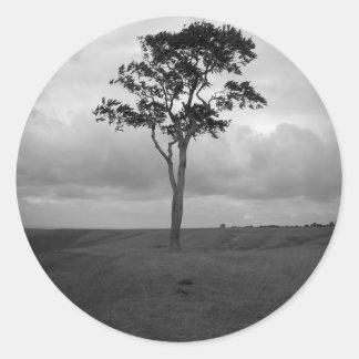 木 ラウンドシール