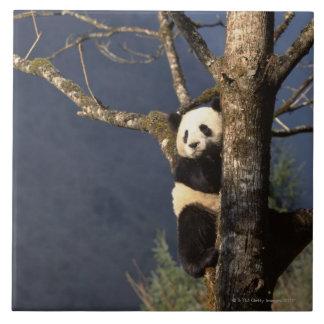 木、中国のパンダくま タイル