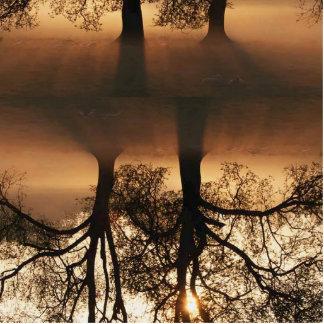 木、木 写真彫刻マグネット