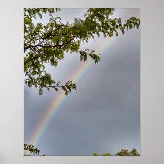 木、薄い灰色の空の組み立ての虹、 ポスター