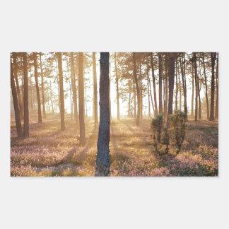 木|野生|森林|床 長方形シールステッカー