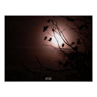木(3月の満月)ポスターを通して ポスター