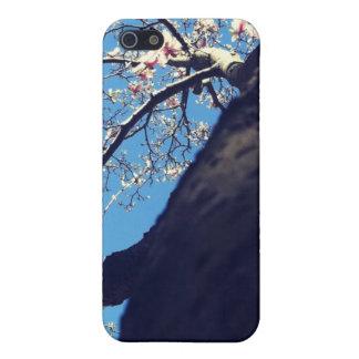 木 iPhone 5 COVER