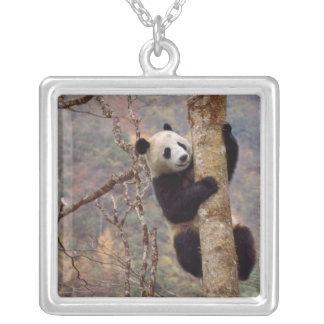 木、Wolong、四川の中国のパンダ シルバープレートネックレス