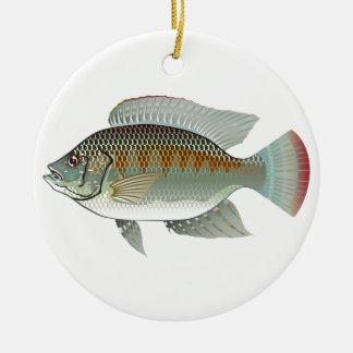 未加工シーフードのイズミダイの魚のベクトル セラミックオーナメント