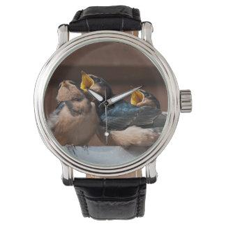 未熟なツバメ(Hirundo Rustica) 腕時計