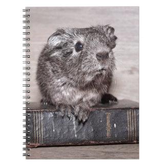 本の灰色のモルモット ノートブック