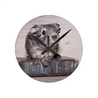 本の灰色のモルモット ラウンド壁時計