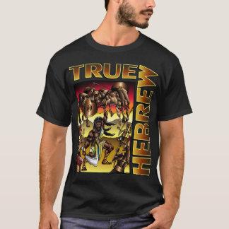 本当のヘブライ(Samson) Tシャツ