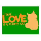 本当愛は柔らかい猫です ポストカード