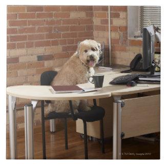 机に坐っている犬 タイル