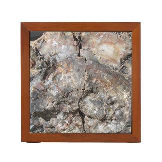 机のオルガナイザー--前部化石木 ペンスタンド