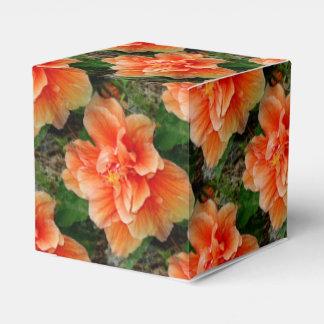 杏子のハイビスカスの熱帯花 フェイバーボックス