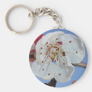 杏子の花のマクロ キーホルダー