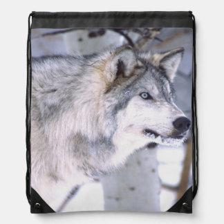 材木のオオカミ、イヌ属ループス、映画動物のユタ) ナップサック