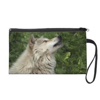 材木オオカミのオオカミの野生動物の手首の財布 リストレット