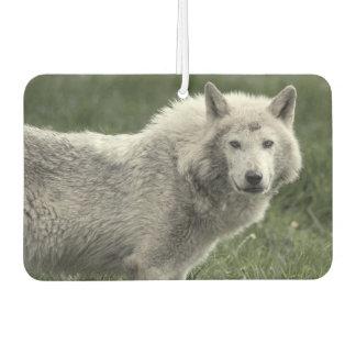 材木オオカミ カーエアーフレッシュナー