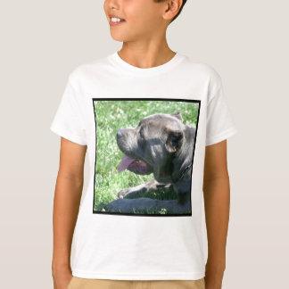 杖CorsoはTシャツをからかいます Tシャツ