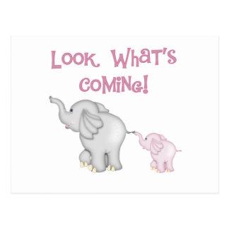 来ている何がピンク象の一見 ポストカード