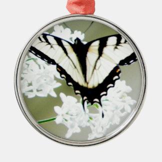 東のトラのアゲハチョウの蝶写真 メタルオーナメント