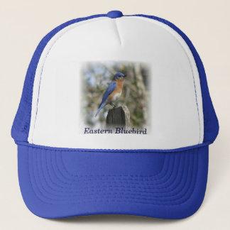 東のブルーバードの男性の帽子 キャップ