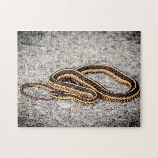 東のリボンヘビ(ガーター・ヘビ) ジグソーパズル