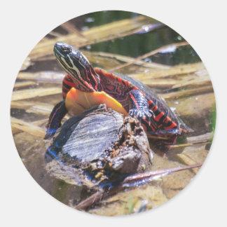 東の色彩の鮮やかなカメ ラウンドシール