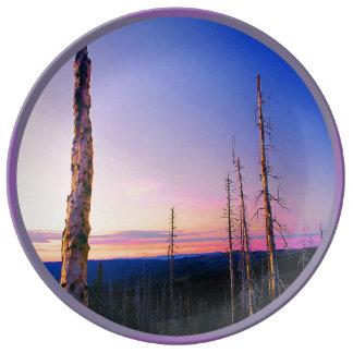 東anthony湖の焼跡オレゴン 磁器プレート