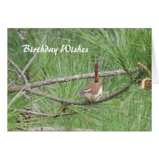 松の木のカロライナミソサザイ カード