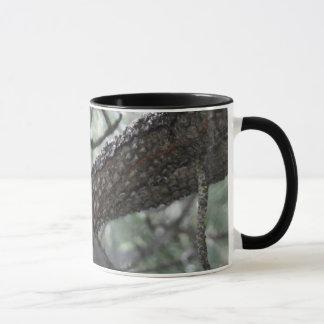 松の木のリス マグカップ