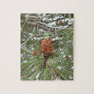 松の木の未熟な男性または花粉の円錐形 ジグソーパズル