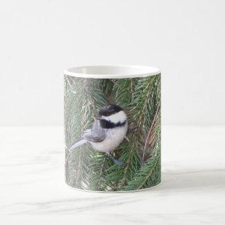 松の木の《鳥》アメリカゴガラ コーヒーマグカップ