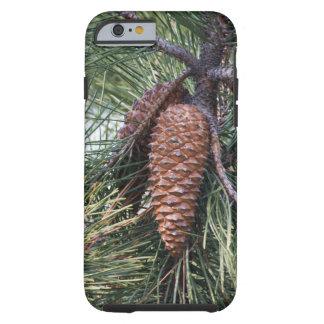 松の木のPinecone ケース