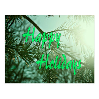 松の木幸せなholidays.jpg ポストカード